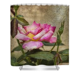 Scripted Rose Shower Curtain by Joan Bertucci