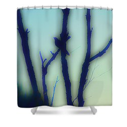 Shower Curtain featuring the photograph Scrub Silhouette by Cassandra Buckley