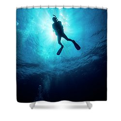 Shower Curtain featuring the photograph Scuba-diving by Rico Besserdich