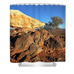 Sculpture Park Broken Hill Shower Curtain by Bill Robinson
