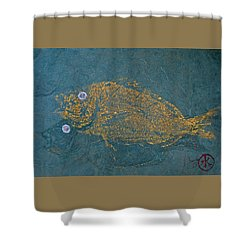 Scup / Porgie Shadow Shower Curtain
