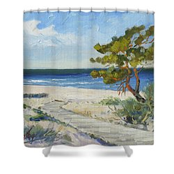 Sea Beach 6 - Baltic Shower Curtain