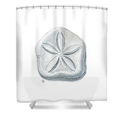 Sea Buscuit Shower Curtain by Stephanie Troxell