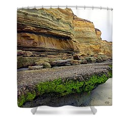 Sea Cliff Shower Curtain by Betty Buller Whitehead