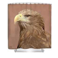 Sea Eagle Shower Curtain by Roy McPeak