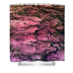 Sea Foam Pinkish Black Shower Curtain