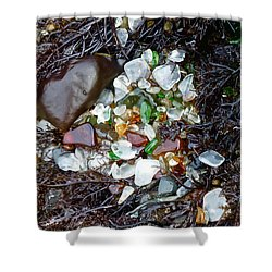 Sea Glass Nest Shower Curtain by Amelia Racca