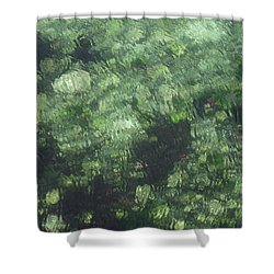 Sea Green Abstract Shower Curtain by Jayne Wilson