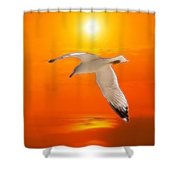 Shower Curtain featuring the photograph Sea Gull by Athala Carole Bruckner
