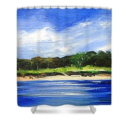 Sea Hill Houses - Original Sold Shower Curtain by Therese Alcorn