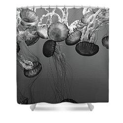 Sea Nettle Jellyfish Ballet Shower Curtain