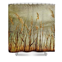 Sea Oats And Sky On Outer Banks Fx Shower Curtain