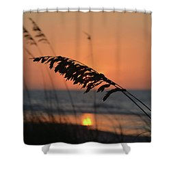Sea Oats At Sunrise Shower Curtain