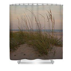 Sea Oats In Soft Light Shower Curtain by Sally Simon