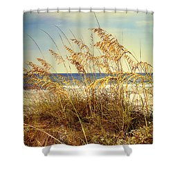 Shower Curtain featuring the photograph Sea Oats Ocean 14 by Linda Olsen