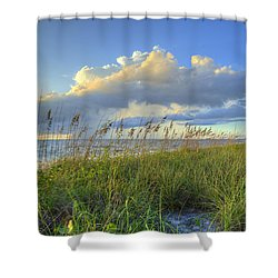 Sea Oats Shower Curtain by Sean Allen