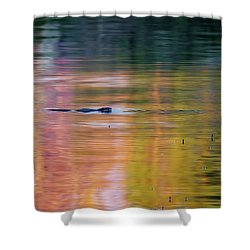 Shower Curtain featuring the photograph Sea Of Color Square by Bill Wakeley