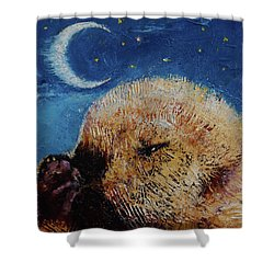 Sea Otter Pup Shower Curtain