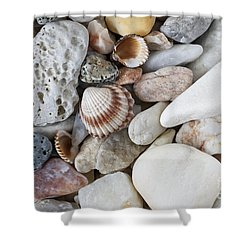 Sea Pebbles With Shells Shower Curtain by Michal Boubin