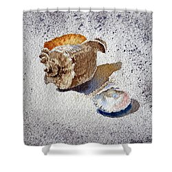 Sea Shells Shower Curtain by Irina Sztukowski