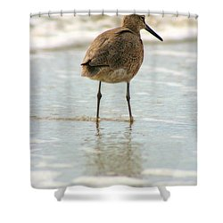 Sea Shore Stroller Shower Curtain