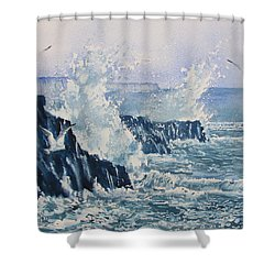 Sea, Splashes And Gulls Shower Curtain