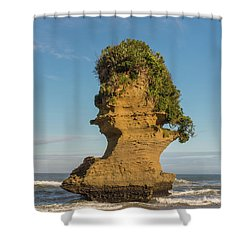 Shower Curtain featuring the photograph Sea Stack, Punakaiki Beach by Gary Eason