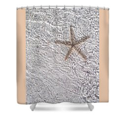 Sea Star 11 Anna Maria Island Shower Curtain