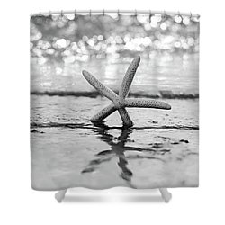 Sea Star Bw Shower Curtain by Laura Fasulo