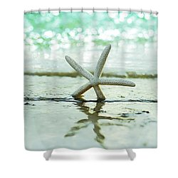 Sea Star Shower Curtain by Laura Fasulo