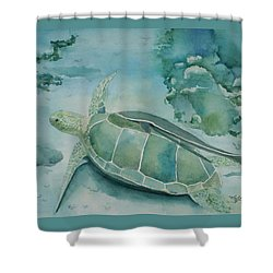 Sea Turtle And Friend Shower Curtain