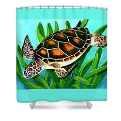 Sea Turtle Honu #352 Shower Curtain by Donald k Hall