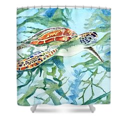 Sea Turtle Series #1 Shower Curtain