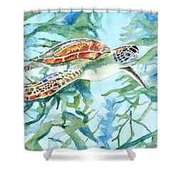 Sea Turtle Series #1 Shower Curtain