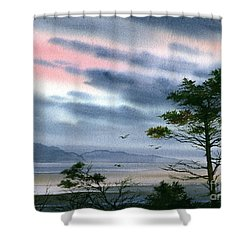 Seacoast Winter Sunset Shower Curtain by James Williamson