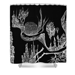 Seadragon Dreams Shower Curtain by Charles Cater