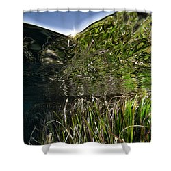 Shower Curtain featuring the photograph Seagrass And Sunset by Rico Besserdich