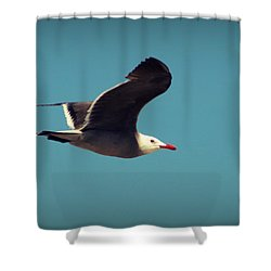 Seagull Aflight Shower Curtain