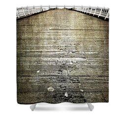 Seagull Bombing Run Shower Curtain by Meirion Matthias