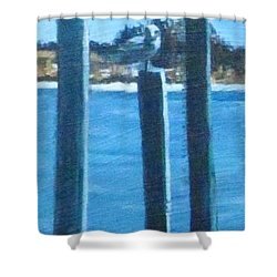 Seagull On A Stick Shower Curtain