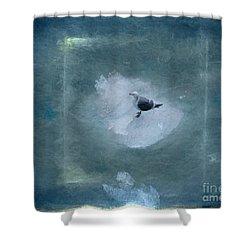 Seagull On Iceflow Shower Curtain by Victoria Harrington