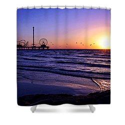 Seagull Sunrise Shower Curtain