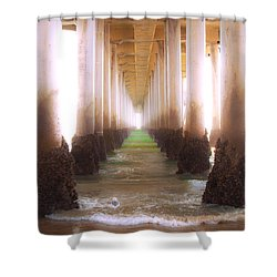 Shower Curtain featuring the photograph Seagull Under The Pier by Jerry Cowart