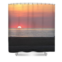 Shower Curtain featuring the photograph Seagull Watching Sunrise by Robert Banach