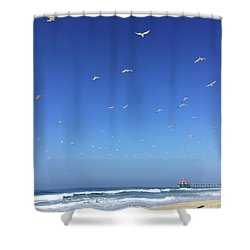 Seagulls And Pier Shower Curtain