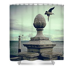 Shower Curtain featuring the photograph Seagulls In Columns Dock by Carlos Caetano