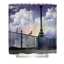 Seagulls On A Rail Shower Curtain