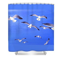 Seagulls Overhead Shower Curtain by Anne Marie Brown