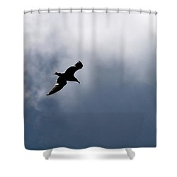 Shower Curtain featuring the photograph Seagull's Sky 1 by Jouko Lehto