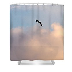 Shower Curtain featuring the photograph Seagull's Sky 3 by Jouko Lehto